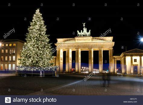 weinachsbaume berlin weihnachtsbaum brandenburger tor pariser platz dezember 2016 stock photo royalty free image