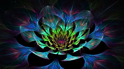 Wallpaper 3d Lotus | 3d lotus flower hd wallpaper wallpaperfx