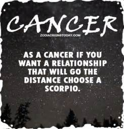 1000 images about scorpio cancer compatibility on