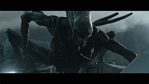 alien covenant review   xenomorphs  geeked gods