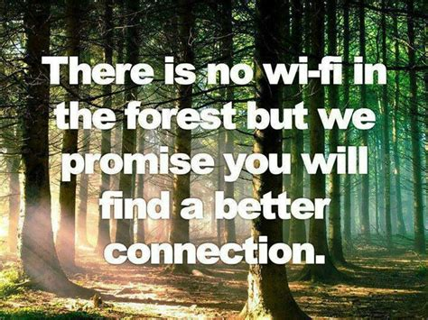 The Forest Would Be A Place Quote Inspirational Quotes About Forests Quotesgram
