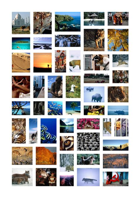 photo collage templates collage maker for windows make
