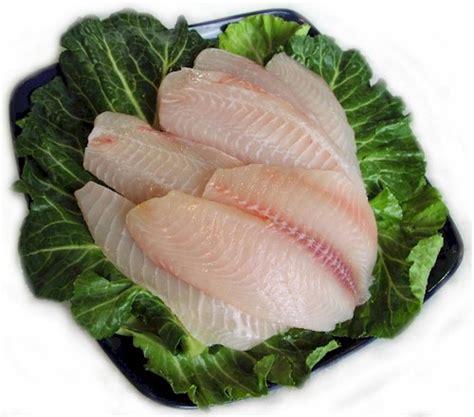 Fillet Ikan Salmon Fresh farmed tilapia 171 jellyfish