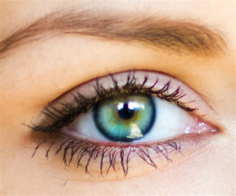 determining eye color the it