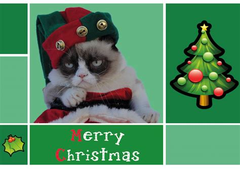 merry christmas  grumpy cat pictures   images  facebook tumblr pinterest