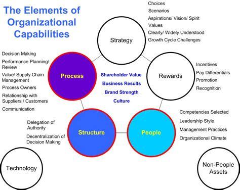 management strategies for cln2 disease sciencedirect the elements of immunology fahim halim khan pdf