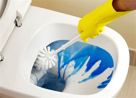 house cleaning house cleaning almeidas cleaning services
