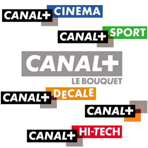 film canal plus enigma global media canal and french film