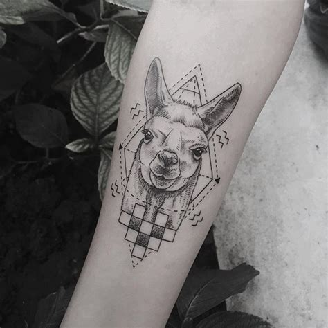 llama tattoo designs 625 best images about llovely llamas on