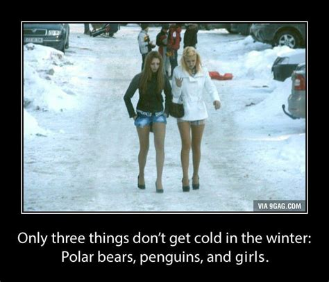 Head Cold Meme - 3 things that don t get cold in the winter 9gag