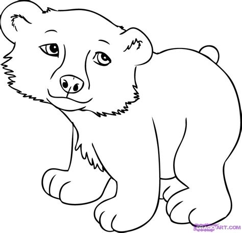 How To Draw A Cartoon Polar Bear Step By Step Cartoon Animals Animals Free Online Drawing Animal Pictures For To Draw