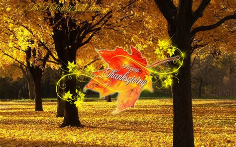 free thanksgiving wallpaper downloads thanksgiving wallpaper download desktop thanksgiving