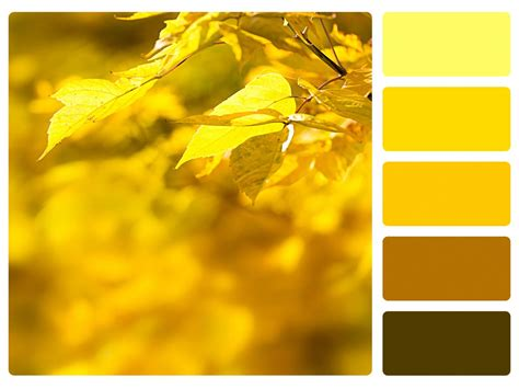 yellow color schemes what do monochromatic colors mean in art we explain in detail