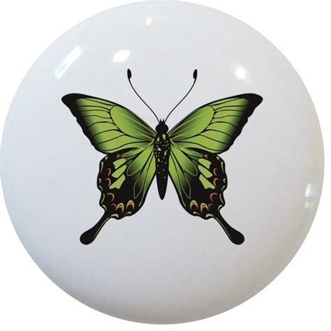 Butterfly Knobs by Bright Green Butterfly Ceramic Knob Traditional Cabinet