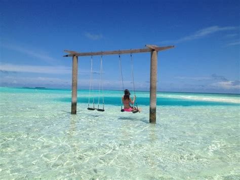 ocean swing coolest swing ever picture of anantara veli maldives