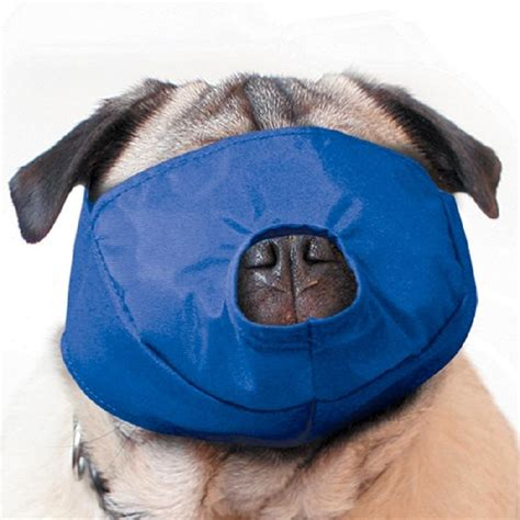 pug muzzles buy muzzle pug medray belfast uk