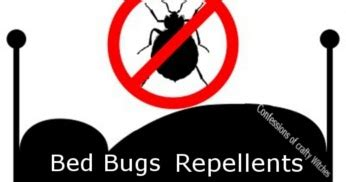 can bed bugs jump from person to person herbal health care bed bug repellents