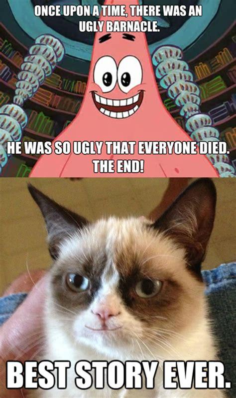 Grumpy Cat Coma Meme - tard the grumpy cat no tard the grumpy cat memes