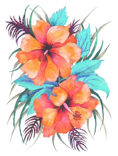 printable tropical flowers tropical flower coloring pages printable