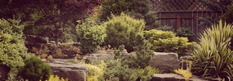 landscaping springfield mo landscaping springfield mo outdoor goods