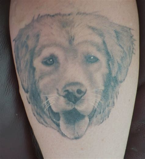 golden retriever tattoo dogs and their 187 friendly denver