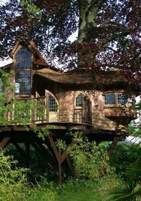 cool tree house cool tree houses this cool tree house has several gl