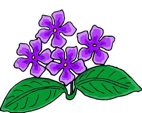imagenes de mariposas lilas flores lilas hd dibujoswiki com