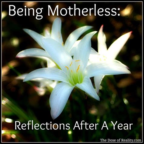 After Reflections by Being Motherless The Reflections After A Year Grief