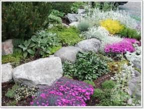 Rocks For Rock Garden 30 Beautiful Rock Garden Design Ideas