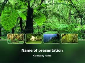 Forest Template by Rainforest Powerpoint Templates And Backgrounds For Your