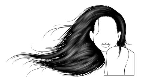 tutorial vector hair photoshop how to vector hair with brushes in adobe illustrator