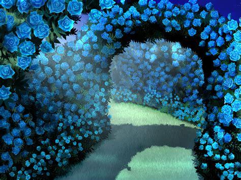 imagenes de rosas azules image gallery jardin de rosas azules