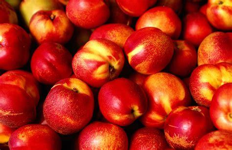 nectarine nutrition calories carbs  health benefits