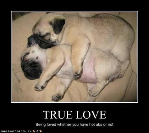 Memes About True Love - true love still exist jokes memes pictures