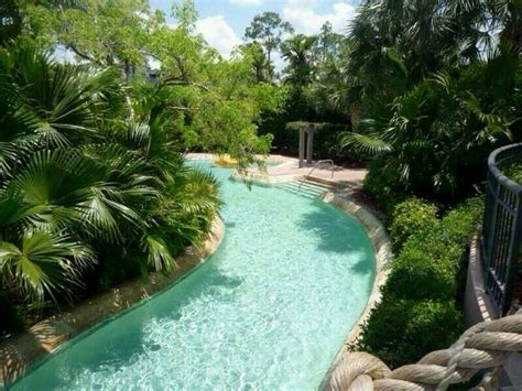 backyard lazy river cost lazy river in someones backyard cool pinterest