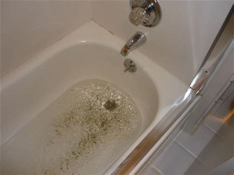 bathtub backed up sewer drain backup repair services in toronto