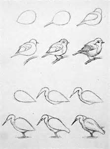 How To Draw Bird Best 25 Bird Drawings Ideas On Simple Bird