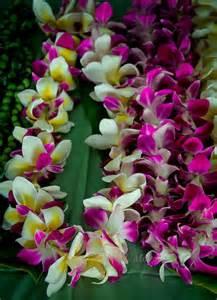 Lei Hawaiian Flowers - best 25 hawaiian leis ideas on pinterest