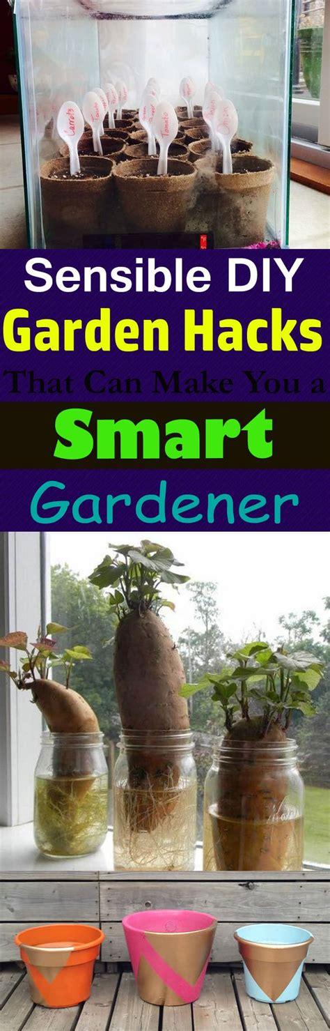 diy garden hacks      smart
