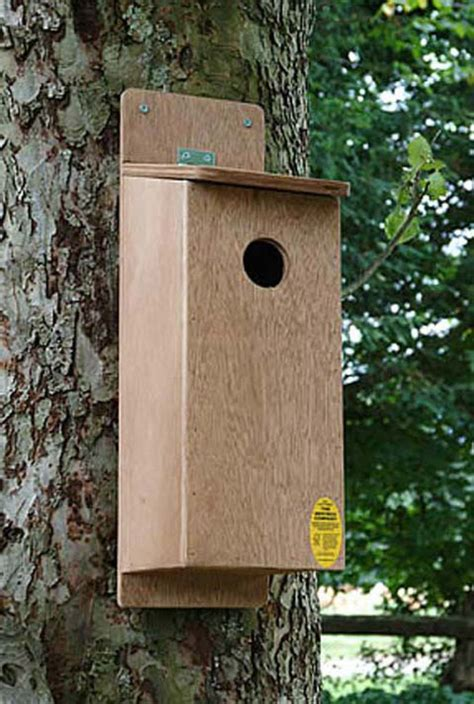 woodpecker starling nest box nhbs
