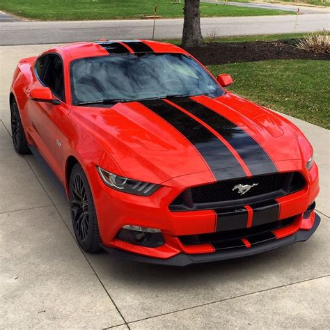 ford mustang stripes 2015 ford mustang shelby gt350 style black racing stripes