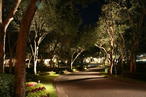 landscape tree lighting backyard creations outdoor lighting landscape lighting services plano frisco prosper