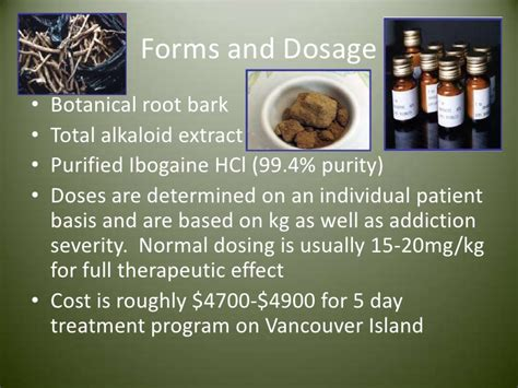 Ibogaine Detox Cost by Ibogaine