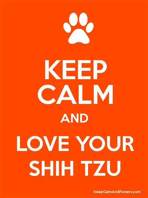 when will my shih tzu calm keep calm and your shih tzu keep calm and posters generator maker for free