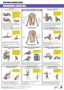 transverse abdominal exercises after c section the 25 best abdominal exercises ideas on pinterest best