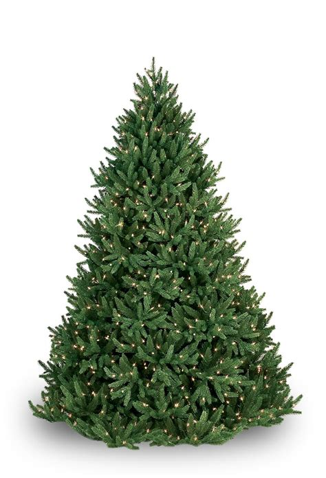 7 ft deluxe noble fir snap pre lit led christmas tree noble fir pre lit tree 28 images prelit artificial