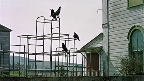 the birds 1963 filming location alfred hitchcock youtube
