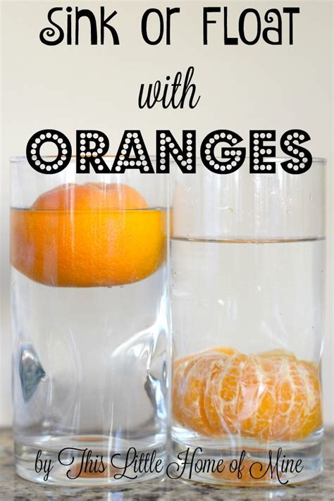 sink or float experiment science experiment sink or float with oranges this