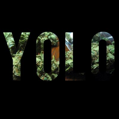 yolo wallpaper tumblr hipster gifs