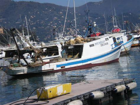 capitaneria di porto santa margherita ligure pesca nasce in liguria il tavolo ambiente e